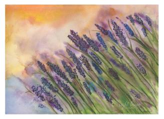 Lavender Field - Christine A. Carter